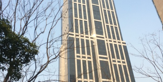 HK New World Tower (香港新世界大厦 )
