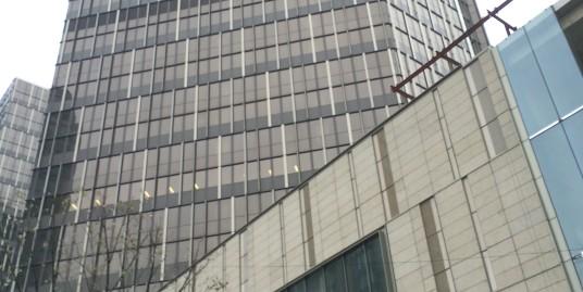 Corporate Avenue 3 (企业天地三期)